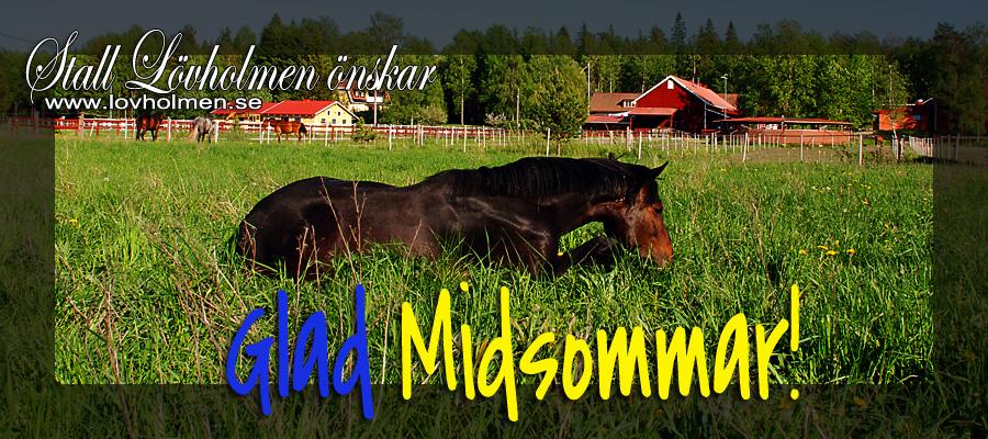 Trevlig Midsommar!!