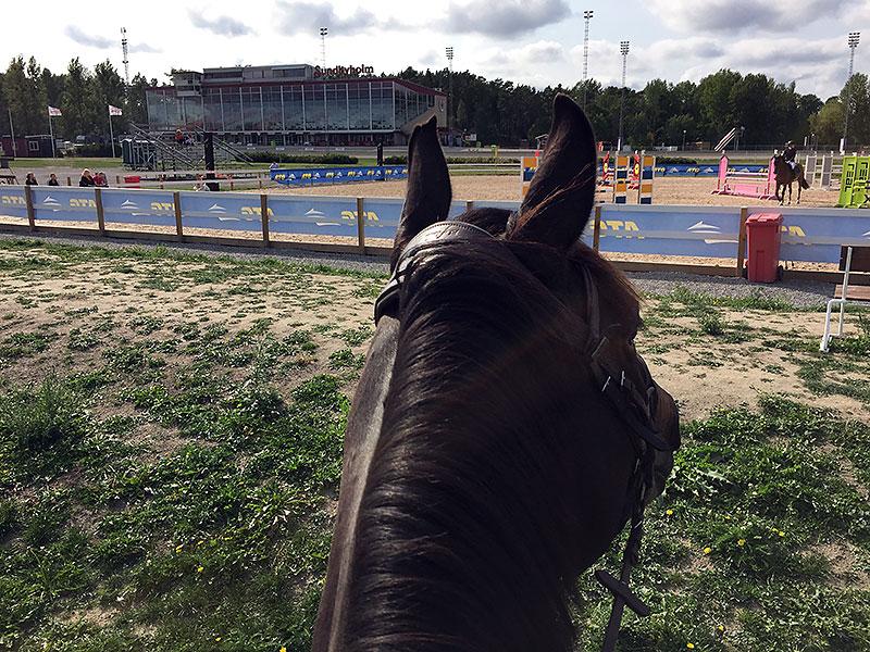 Tävlingar, mello och kräftskiva…